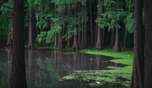 調節池とは?雨水貯留施設とは?調整池や遊水地との違いは?