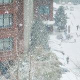 雪害 雪災 雹災
